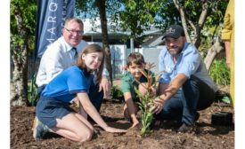 Marquis Group grows nuts for World Macadamia Nut Day