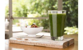 Mankai vegetable whole-protein ingredient