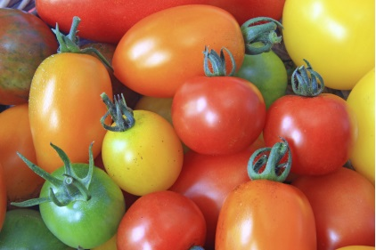 Bell_Tomatoes_iStock_F