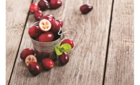 Fruit ingredients deliver flavor, color and nutritional benefits to snacks and baked goods