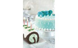 Baskin Robbins winter seasonal cakes