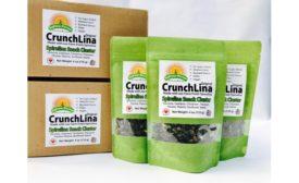 Spirulina snack cluster
