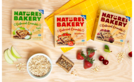 Natures Bakery Oatmeal Crumble Bars