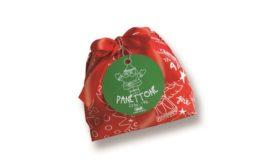 Celebrate the Holiday Season with Bindi Panettone