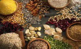 Gluten-free ingredients