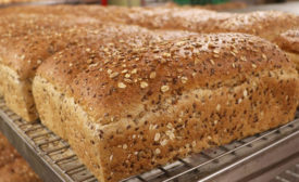 Insights to fuel R&D strategies for bread products