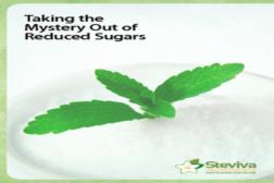 Stevia Feature Image