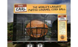 Cosmos Creations' Carl the corn ball