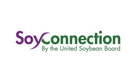 Soy Connection Logo