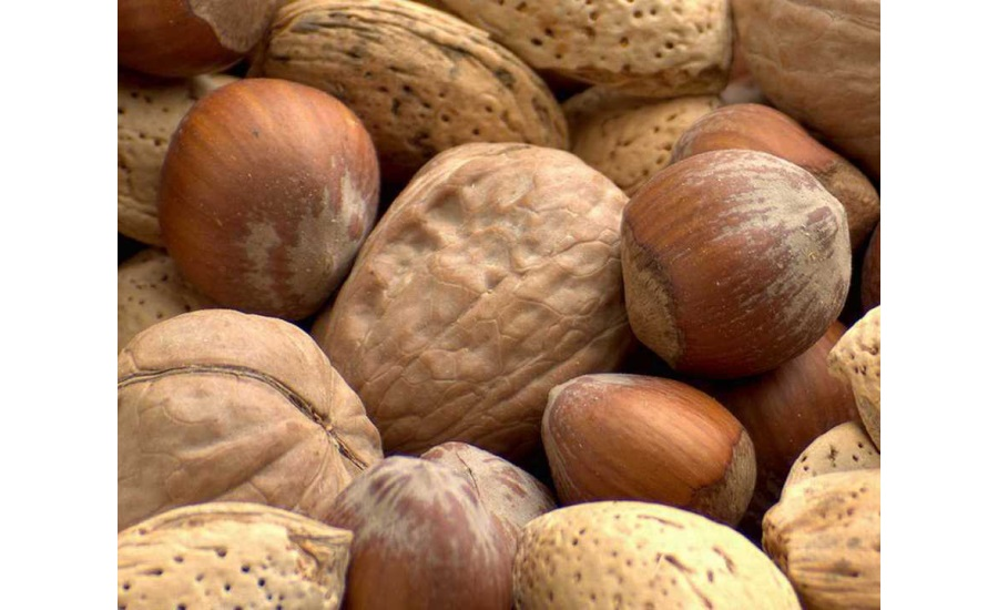 Mixed_Nuts_in_Shells_900x550.jpg