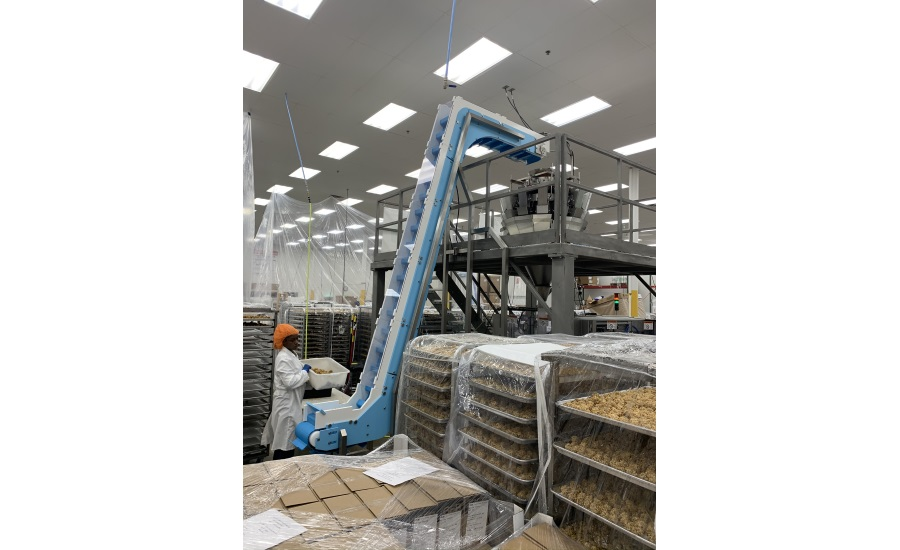 Case study: Two gluten-free brothers increase productivity with two easy-to-clean conveyors