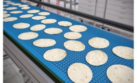 Rexnord dual detectable material for select KleanTop and TableTop conveyor belts