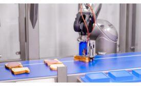 Grote Company Sandwich Assembly Robotics
