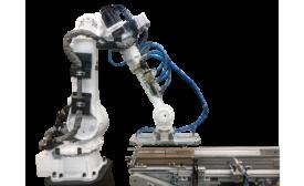 Paxiom Group Z.Zag Robotic Palletizer