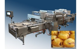 Hinds Bock mini baking line equipment
