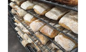 publican quality breads, chicago