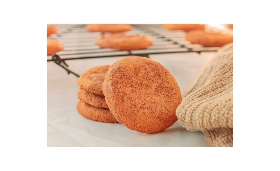TIC Gums snickerdoodle cookie