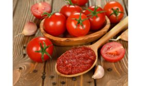 Gold Coast Ingredients Expands Tomato Flavor Offerings