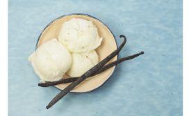 Flavorchem vanilla enhancers