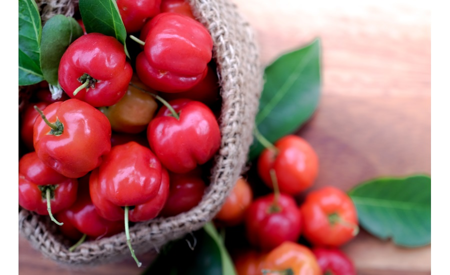 CAIF introduced new acerola powder extract with a minimum of 32 percent of native Vitamin C