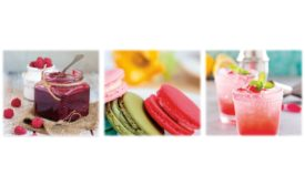 Batory Foods introduces line of interchangeable, high-intensity sweetener blends for convenient sugar replacement