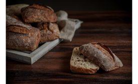 Puratos USA releases new sourdough, Sapore Leo Organic