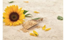 Sunflower lecithin from Sternchemie granted GRAS No-Objection Letter by FDA