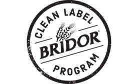 Bridor logo