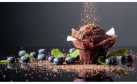 Blommer Chocolate Global R&D Center releases coronavirus whitepaper