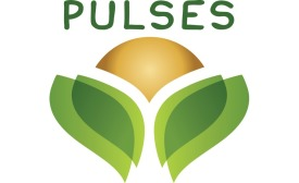Pulses packaged products