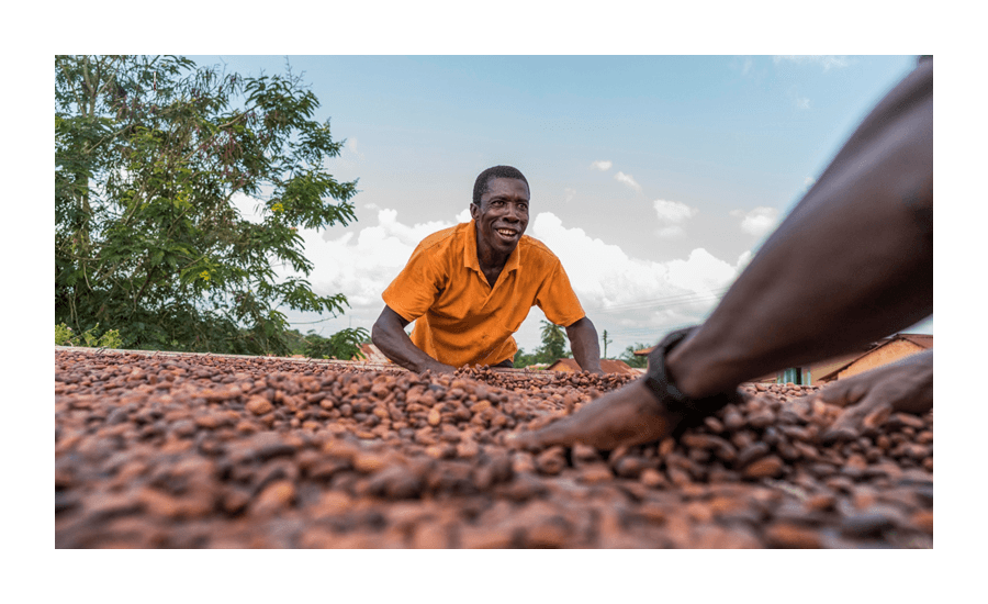 Barry Callebaut cocoa sustainability