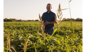 Kellogg grand expands Illinois Conservation Program supporting farmers to adapt to climate change, reduce greenhouse gas emissions