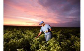 PepsiCo announces 2030 goal to scale regenerative farming practices across 7 million acres, equivalent to entire agricultural footprint
