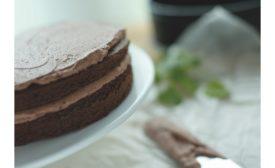Palsgaard Devils food cake