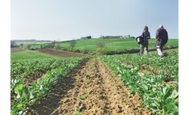 ECOCERT Group acquires CERTISYS, the Belgian body for organic certification