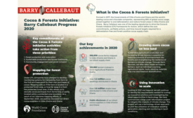 Barry Callebaut: Why the future of chocolate depends on healthy forests