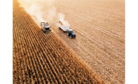 Exclusive interview: Q&A with the Grain Foods Foundation, on manufacturing and the supply chain during the COVID-19 pandemic