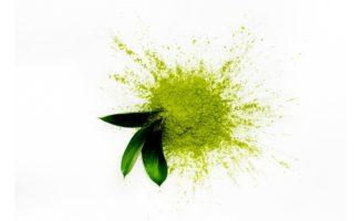 Taiyo and ITO EN partner to bring Japanese green tea and matcha products to North America