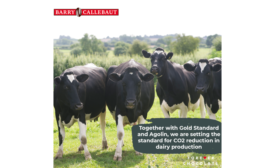 Barry Callebaut sets the standard for CO2 reduction in dairy production
